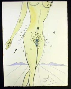 Salvador Dali - Dali Illustre Casanova - Ants, Nails & Flies on Nude