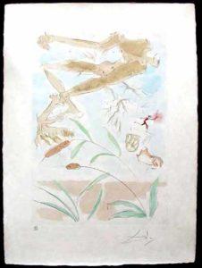 Salvador Dali - Le Bestiaire de La Fontaine - La chene et le roseau