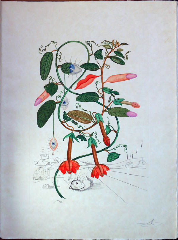 Salvador Dali - Flora Dalinae (FlorDali) - Pisum Sensuale(Cobea, Les Levres, Lips)