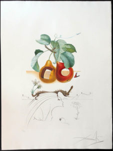 Salvador Dali - FlorDali (Les Fruits) - FlorDali Fruits Trouees
