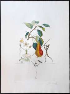 Salvador Dali - FlorDali (Les Fruits) - FlorDali Pear