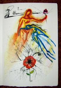 Salvador Dali - Alice in Wonderland - Alice's Evidence