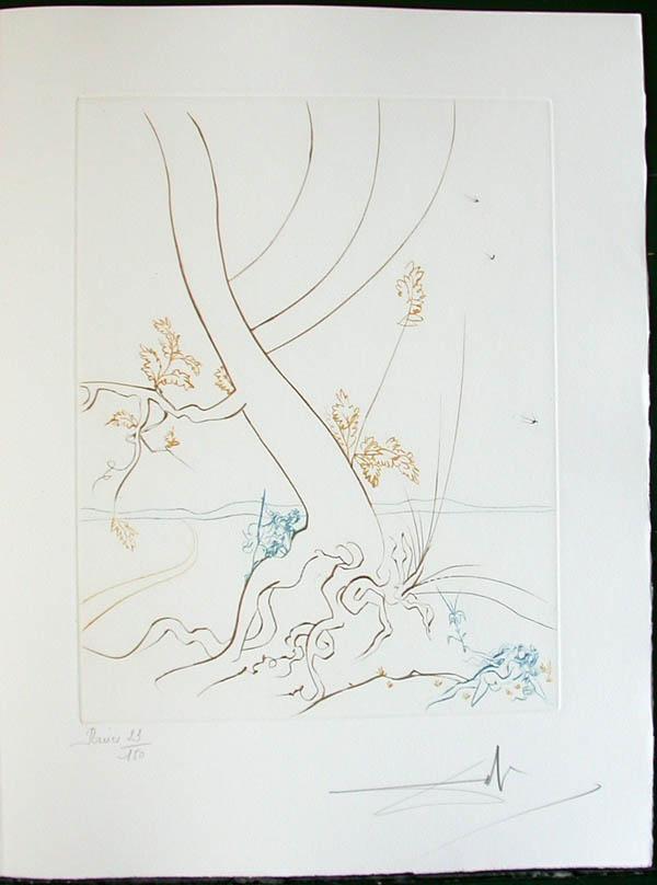 Salvador Dali - Paradise Lost - L'Arbre de Science(The Tree of Science)