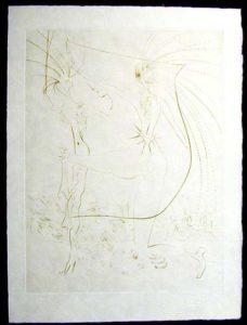 Salvador Dali - La Venus aux Fourrures - Les Fesses Piquantes(The Piquante Buttocks)