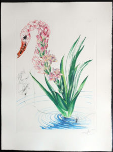 Salvador Dali - Surrealist Flowers, Florals - Water-hybiscus + swan, C
