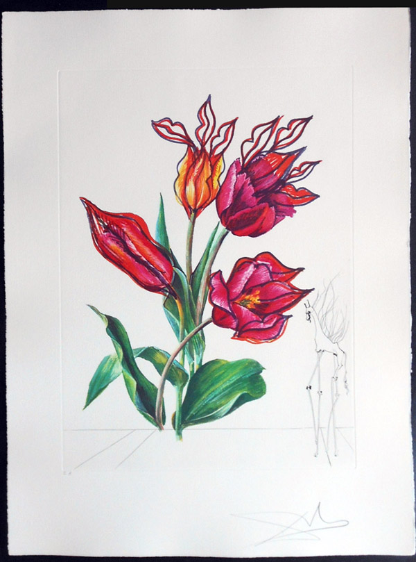 Salvador Dali - Surrealist Flowers, Florals - Tulips + Lips, E