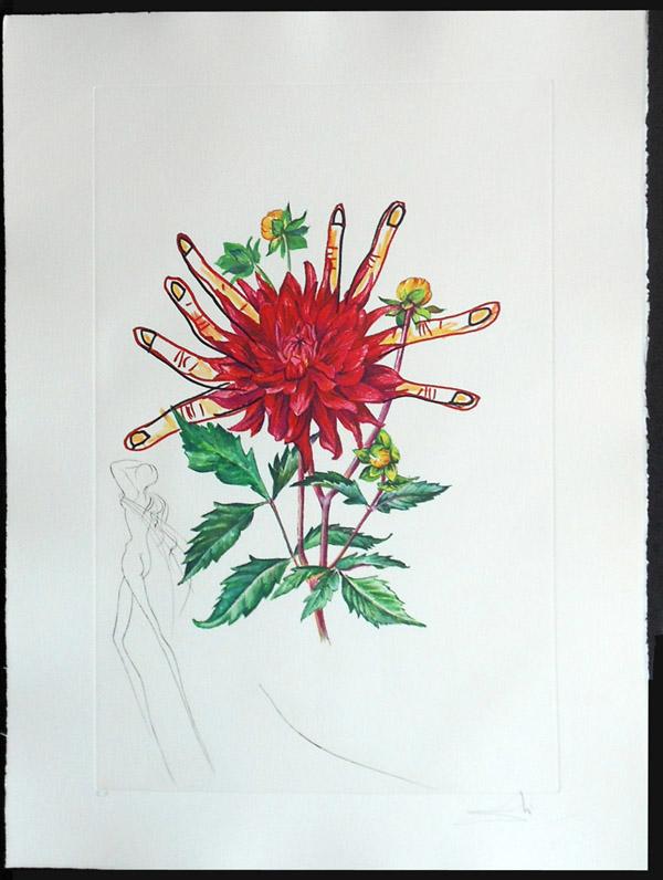 Salvador Dali - Surrealist Flowers, Florals - Dahlia + Fingers, H