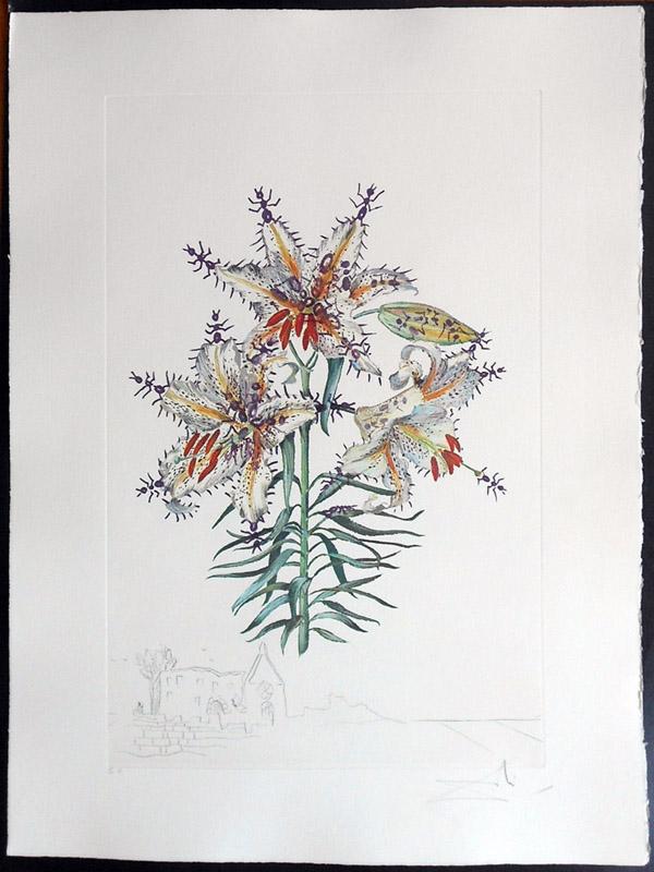 Salvador Dali - Surrealist Flowers, Florals - Lily + Ants, K