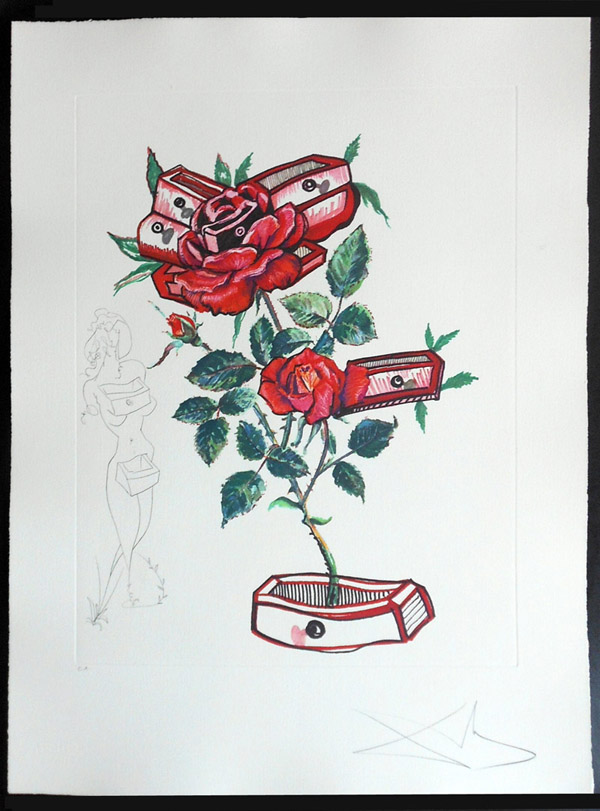 Salvador Dali - Surrealist Flowers, Florals - Rose + Drawers, L