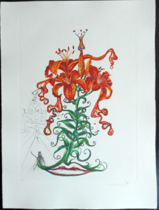 Salvador Dali - Surrealist Flowers, Florals - Tiger Lilies + Mustache, O
